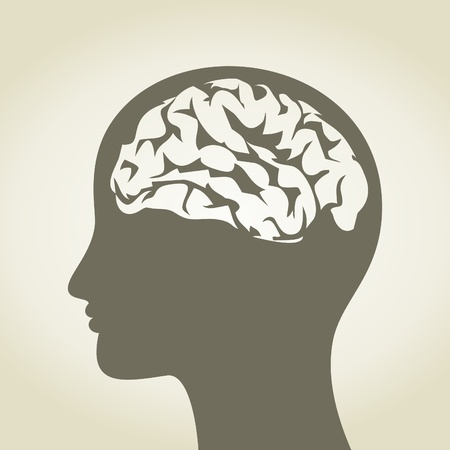 Head of the person with a brain  A  illustration