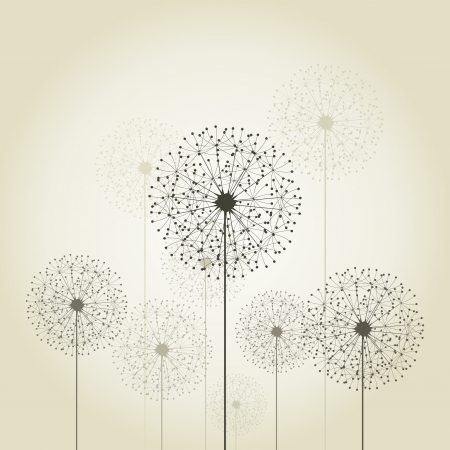 Flowers dandelions on a grey background  A vector illustration