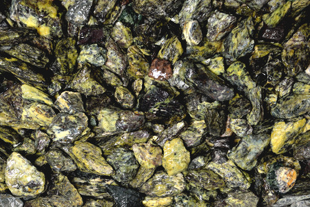 wet small gray-green stones of heterogeneous structure, background