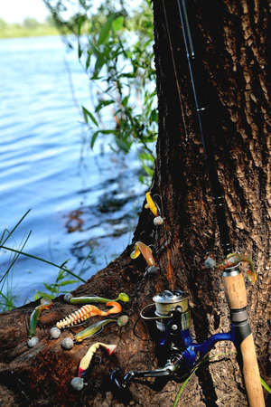 Photo pour fishing silicone lures spinning rod, old tree with textured bark on the river bank, close-up copy space, selective focus - image libre de droit