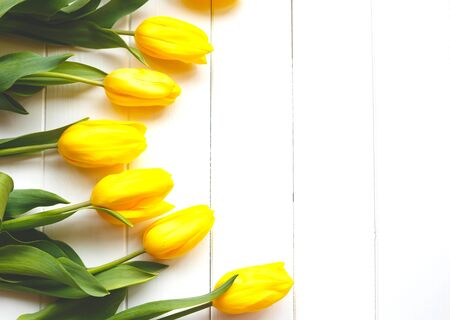 Photo pour Beautiful fresh spring tulips on a white background. flat lay. - image libre de droit