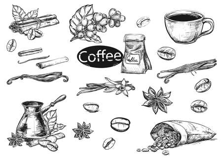 Illustration pour Hand drawn sketch black and white coffee set. Vector illustration of coffee cup, beans, leaf, branch, vanilla, turka, cinnamon. Elements in graphic style menu. - image libre de droit