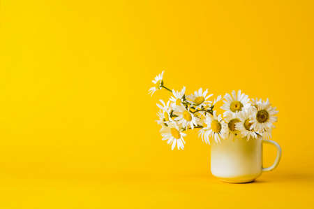 Photo for Daisy in white iron circle on yellow background - Royalty Free Image