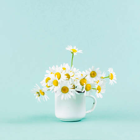 Foto de Daisy in white iron circle on turquoise background - Imagen libre de derechos
