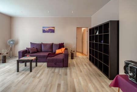 Photo pour Cozy sofa. Opened door. Shelves. Decorative flowers. Blurred picture. - image libre de droit
