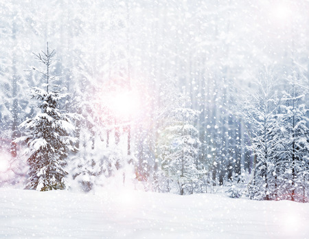 Photo pour Winter. Snowfall. - image libre de droit
