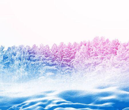 Foto de Frozen winter forest with snow covered trees. - Imagen libre de derechos