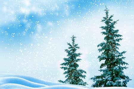 Photo pour Frozen winter forest with snow covered trees. outdoor - image libre de droit