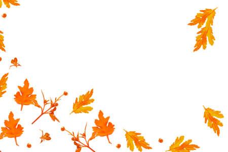 Photo pour Colorful autumn flowers of chrysanthemum on a white background. floral composition. - image libre de droit
