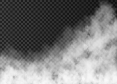 Illustration pour White smoke  isolated on transparent background.  Steam special effect.  Realistic  vector fire fog  or mist texture. - image libre de droit