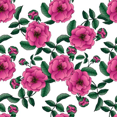 Illustration pour Endless texture for design. Decorative seamless background for greeting cards, interior, cosmetics and textiles. - image libre de droit