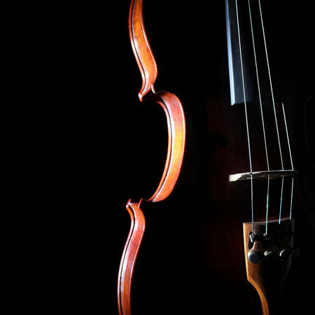 Violin orchestra musical instruments Silhouette string