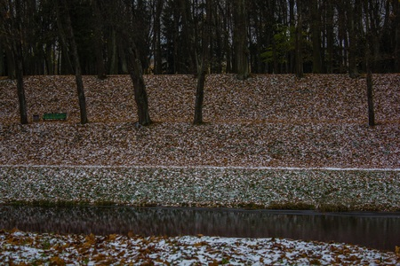 Foto de Autumn park and the first snow. Two seasons in one photo. Winter and autumn. Yellow leaves and snow - Imagen libre de derechos