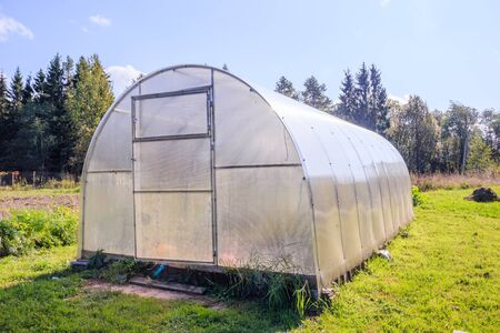 Foto per Greenhouse. Bright greenhouse in the garden. Agricultural harvest. Indoor stationary greenhouse - Immagine Royalty Free