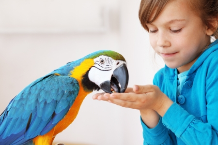 Portrait of a kid girl with her domestic ara parrot