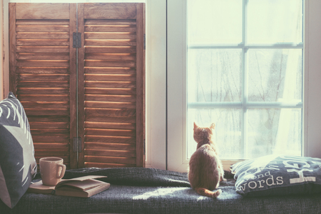 Photo pour Warm and cozy window seat with cushions and a opened book, light through vintage shutters, rustic style home decor. - image libre de droit