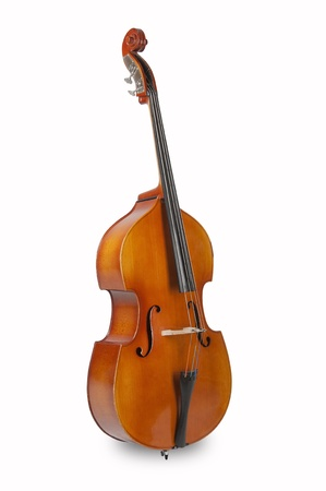 bass on a white background, standing