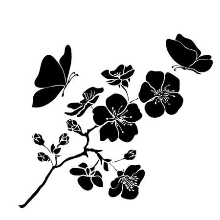 Illustration pour twig sakura blossoms. Vector illustration. Black outline - image libre de droit