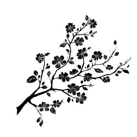 Illustration pour twig sakura blossoms. Vector illustration. Black Silhouette - image libre de droit