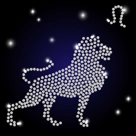 Sign of the zodiac Leo is the starry sky, vector Illustration. Contour icon.