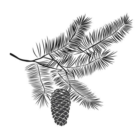 Ilustración de Hand drawn pine tree branch isolated on white background. Ink illustration in vintage engraved style. - Imagen libre de derechos