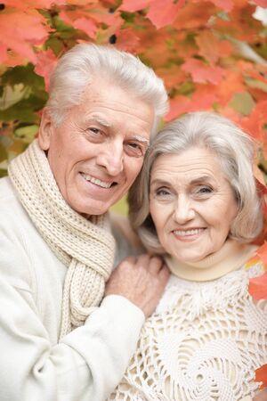 Photo pour Smiling senior couple posing in the park - image libre de droit