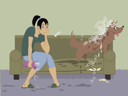 Washing a dog. Exhausted young girl sitting on a torn couch, holding a wet sponge, looking at her unruly excited dog, wet and covered with bubbles leaving dirty footprints on a carpet and on the furniture, vector illustration