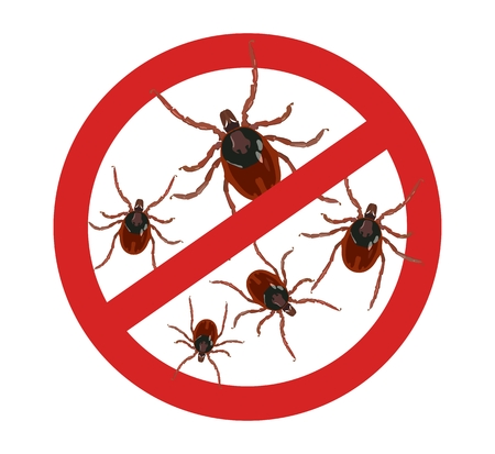 Vector warning sign about dangerous insect mites. Insect pest control.
