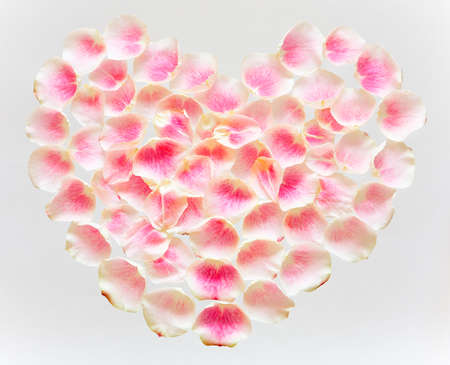 Symbol of love - heart, lined with tender rose petals on a white background.