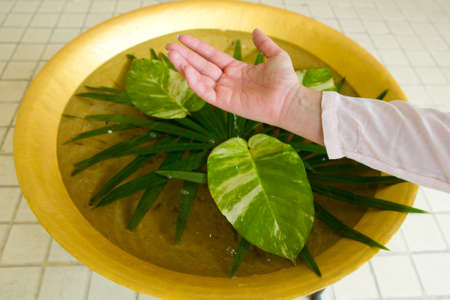Drops of water drip from a woman's hand into a basin with exotic leaves. Thailand.