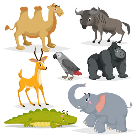 Illustration pour African animals cartoon set. Gorilla monkey, gray parrot, elephant, gazelle antelope, crocodile, bactrian camel and wildebeest. Zoo wildlife collection. Vector illustrations isolated on white background. - image libre de droit