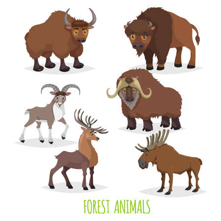 Illustration pour Set of woodland and forest hoofed and horned animals. Europe and North America fauna collection. Yak, bison, urial (mountain male sheep), musk ox, deer and moose. - image libre de droit
