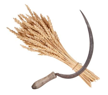 Sheaf of wheat and sickle