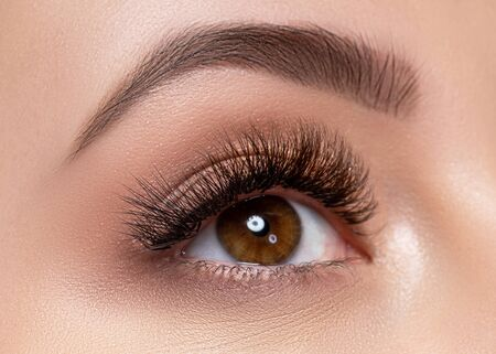 Photo pour Beautiful macro photography of a woman's eye with extreme makeup of long lashes. Perfect long lashes, imitation. Rejection of cosmetics. Close-up fashion eye makeup, eyebrow lamination is beautiful - image libre de droit
