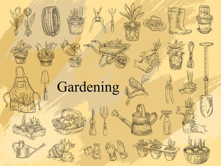 Illustration for Vector farming set with gardening tools, seedlings, plants in pots, boots, apron and hat. Illustration in engraving vintage style for prints, logos, labels, flyers, shops, markets. - Royalty Free Image