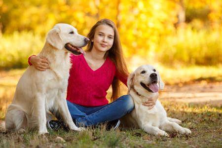 portrait of Beautiful young girl with her dogs labrador retrievers outdoor in autumn beautiful park
