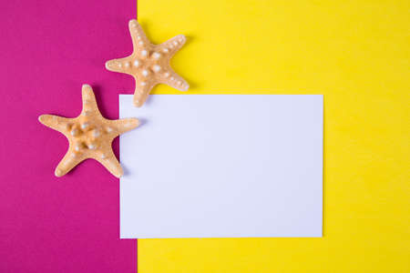 Empty paper sheet with two starfishes on colored crimson and yellow backgrounds with negative space. Minimalistic colorful summer background. Top view. Flat lay in marine style.