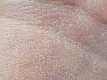 Photo pour Skin macro texture with a vein - image libre de droit