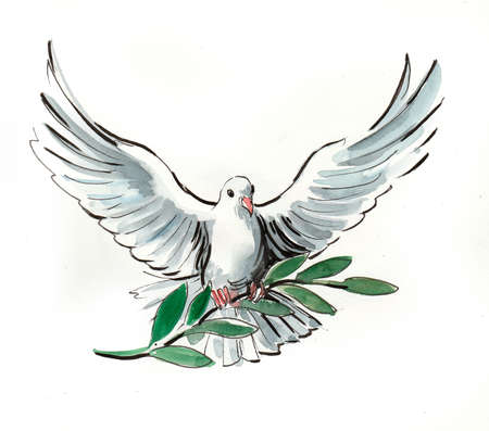 Photo for White dove. Watercolor illustration - Royalty Free Image