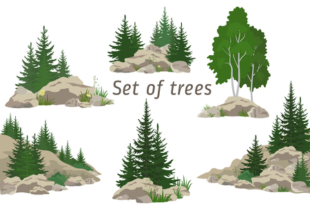 Set Landscapes, Isolated on White Background Coniferous and Deciduous Trees, Flowers and Grass on the Rocks. ector