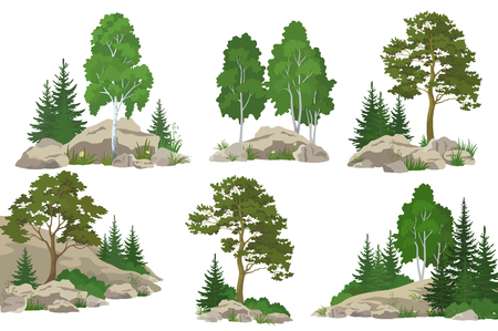 Illustration pour Set Landscapes, Coniferous and Deciduous Trees, Pine, Fir Tree, Birch, Flowers and Grass on the Rocks, Isolated on White Background. Vector - image libre de droit