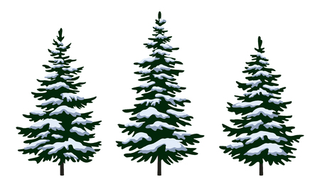 Illustration pour Set Green Fir Trees with White and Blue Snow, Winter Holiday Christmas Decoration Isolated on White Background. Vector - image libre de droit