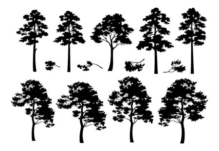 Illustration pour Pine Trees and Branches, Set Black Silhouettes Isolated on White Background. Vector - image libre de droit
