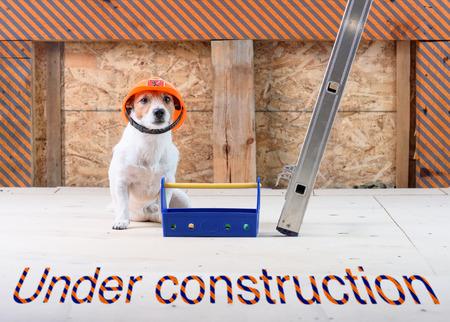 Photo pour Under construction site with dog as funny builder wearing hard hat - image libre de droit