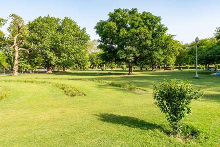 Foto de Lahore Bagh-e-Jinnah Park Picturesque View of Grass and Trees on a Sunny Blue Sky Day - Imagen libre de derechos