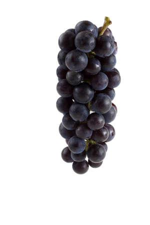 Foto für Black wine grape - Lizenzfreies Bild