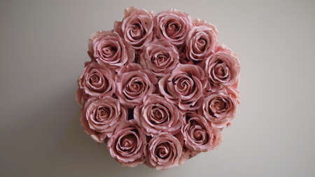 Photo pour Bouquet of exclusive dusty pink roses on a neutral background. - image libre de droit