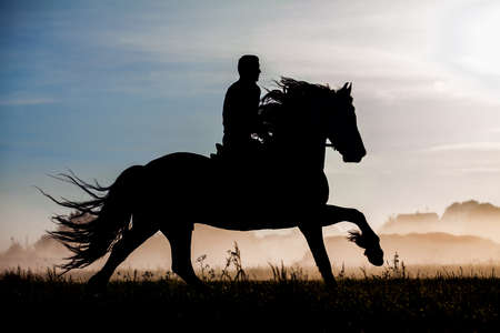 Silhouette of rider and horse in sunset background
