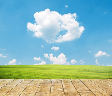 Fresh spring green grass with blue sky and wooden floor