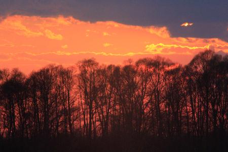 Photo pour dark sunset with crimson clouds - image libre de droit